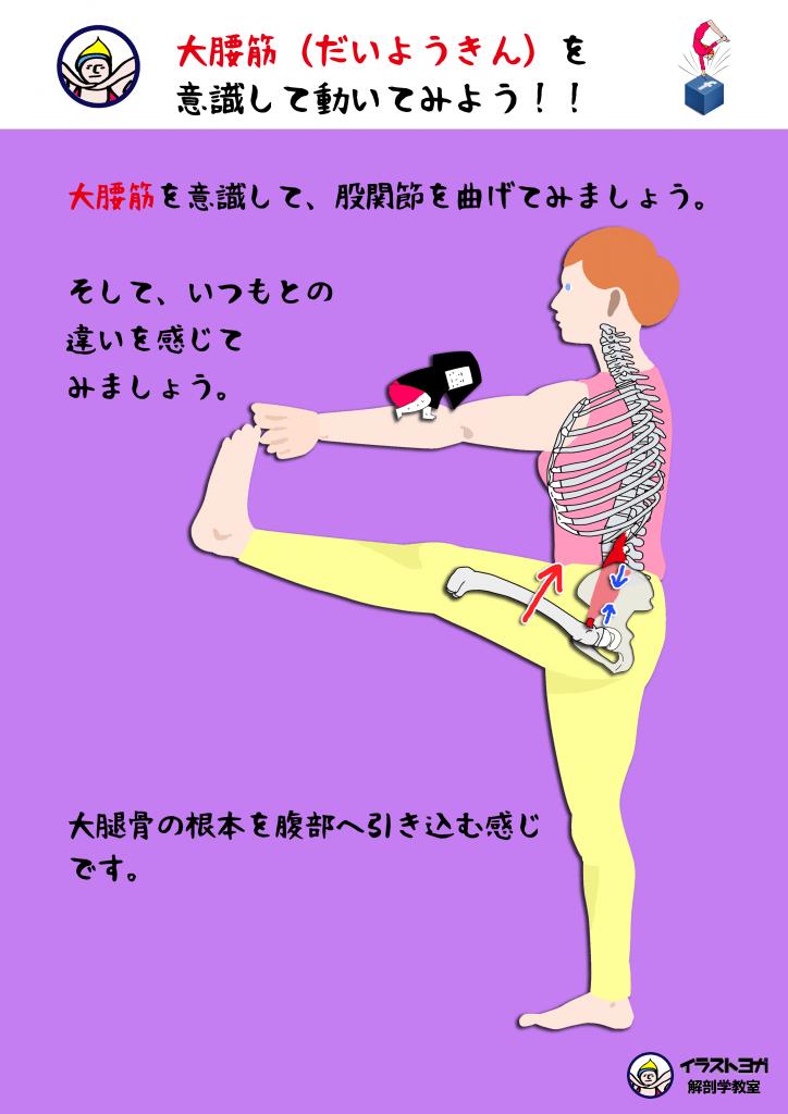 大腰筋|yoga