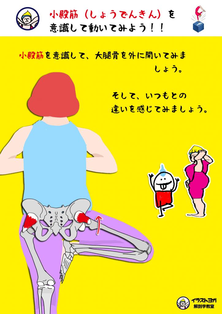解剖学ヨガ|イラスト