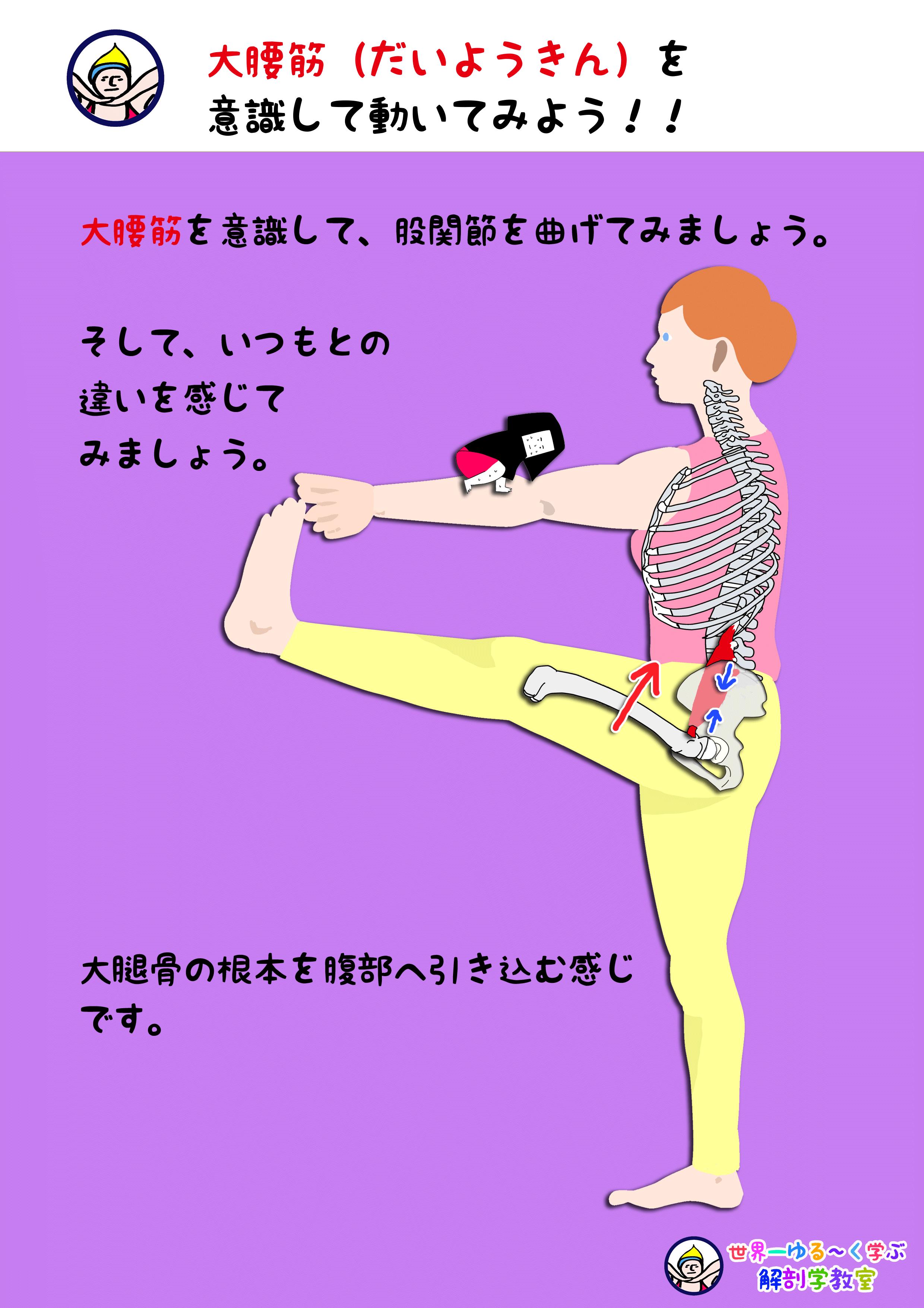 大腰筋を意識する