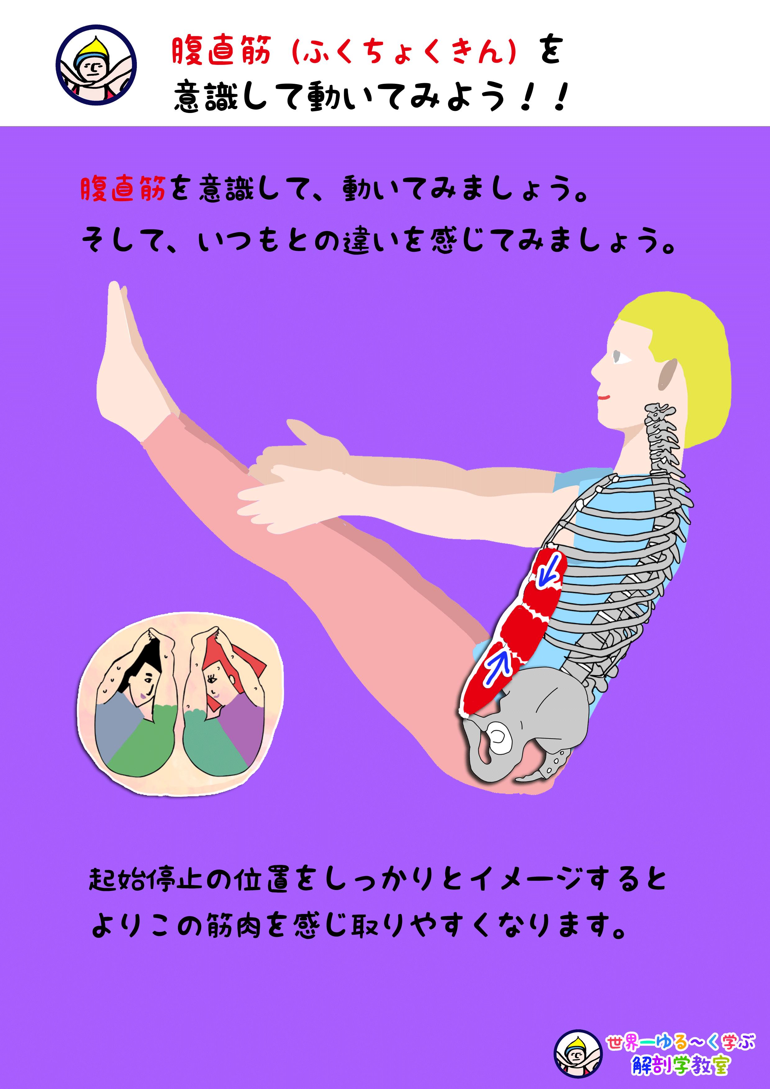 腹直筋を意識する