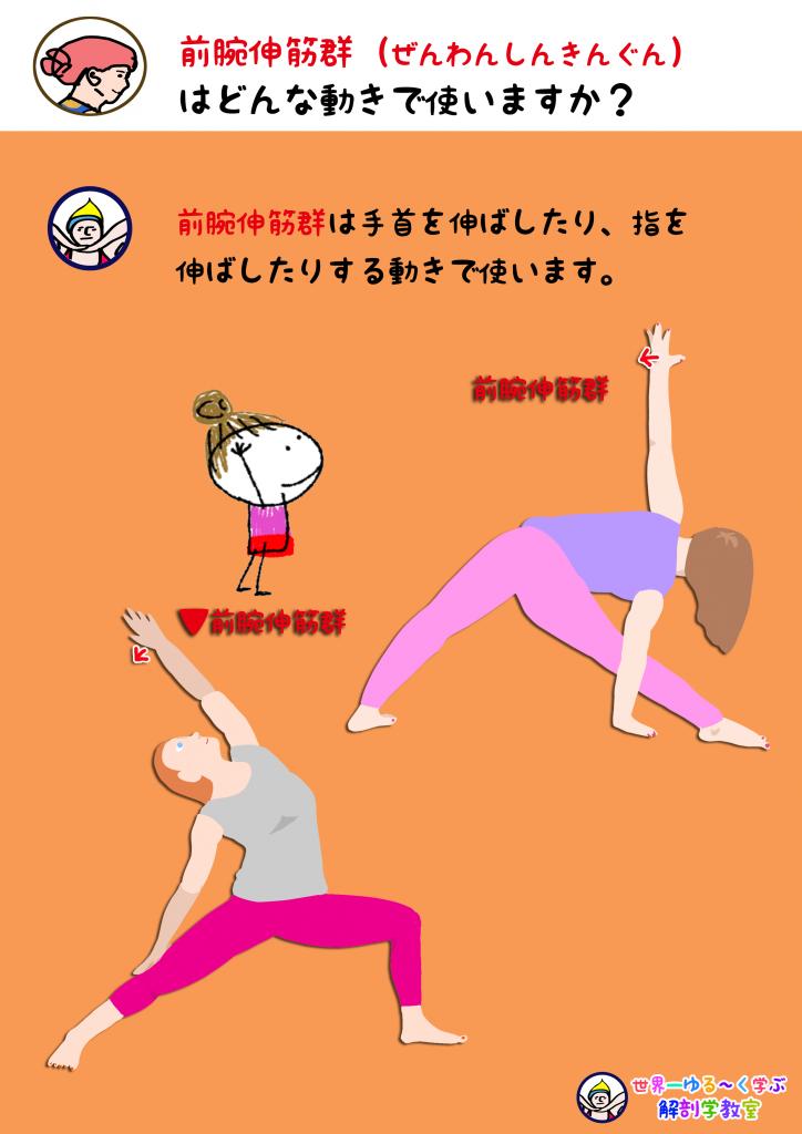 前腕伸筋群を使う動き