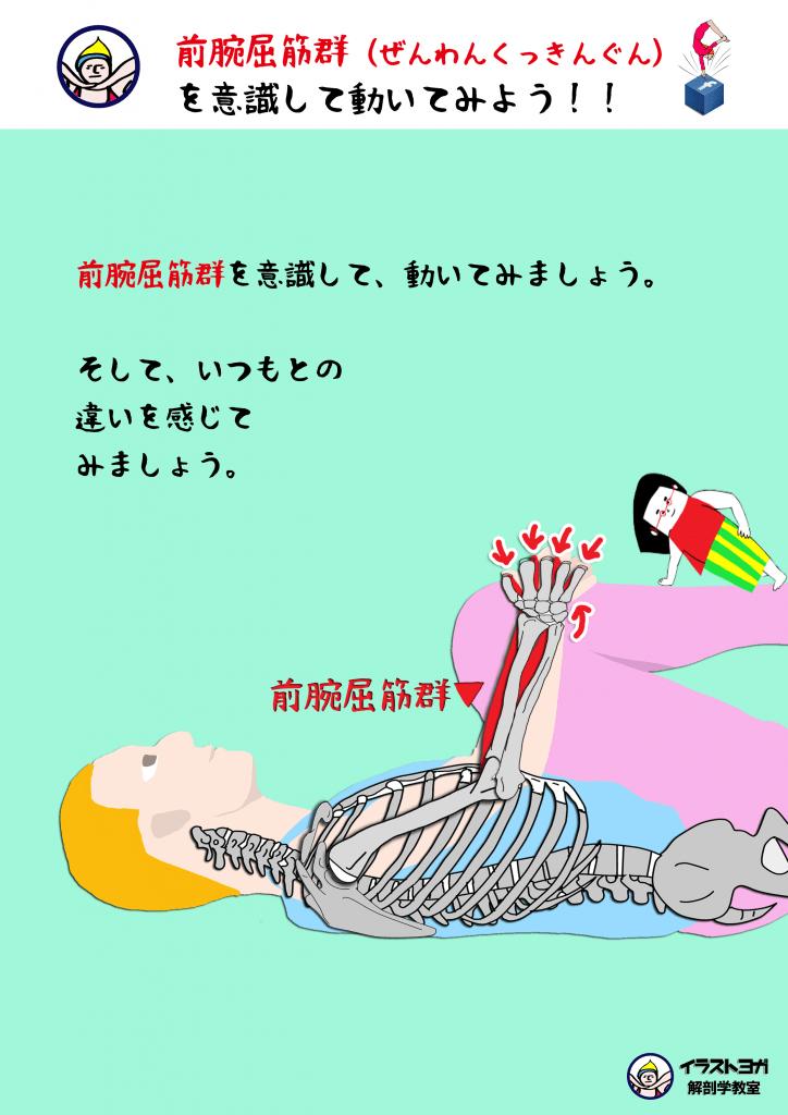 ヨガ解剖学 セミナー
