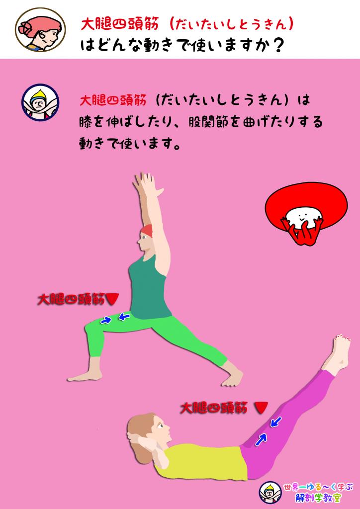 大腿四頭筋を使う動き