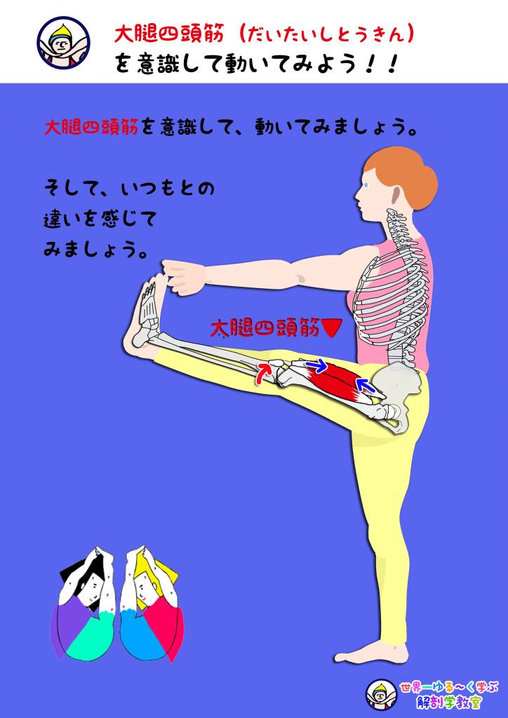 大腿四頭筋を意識する