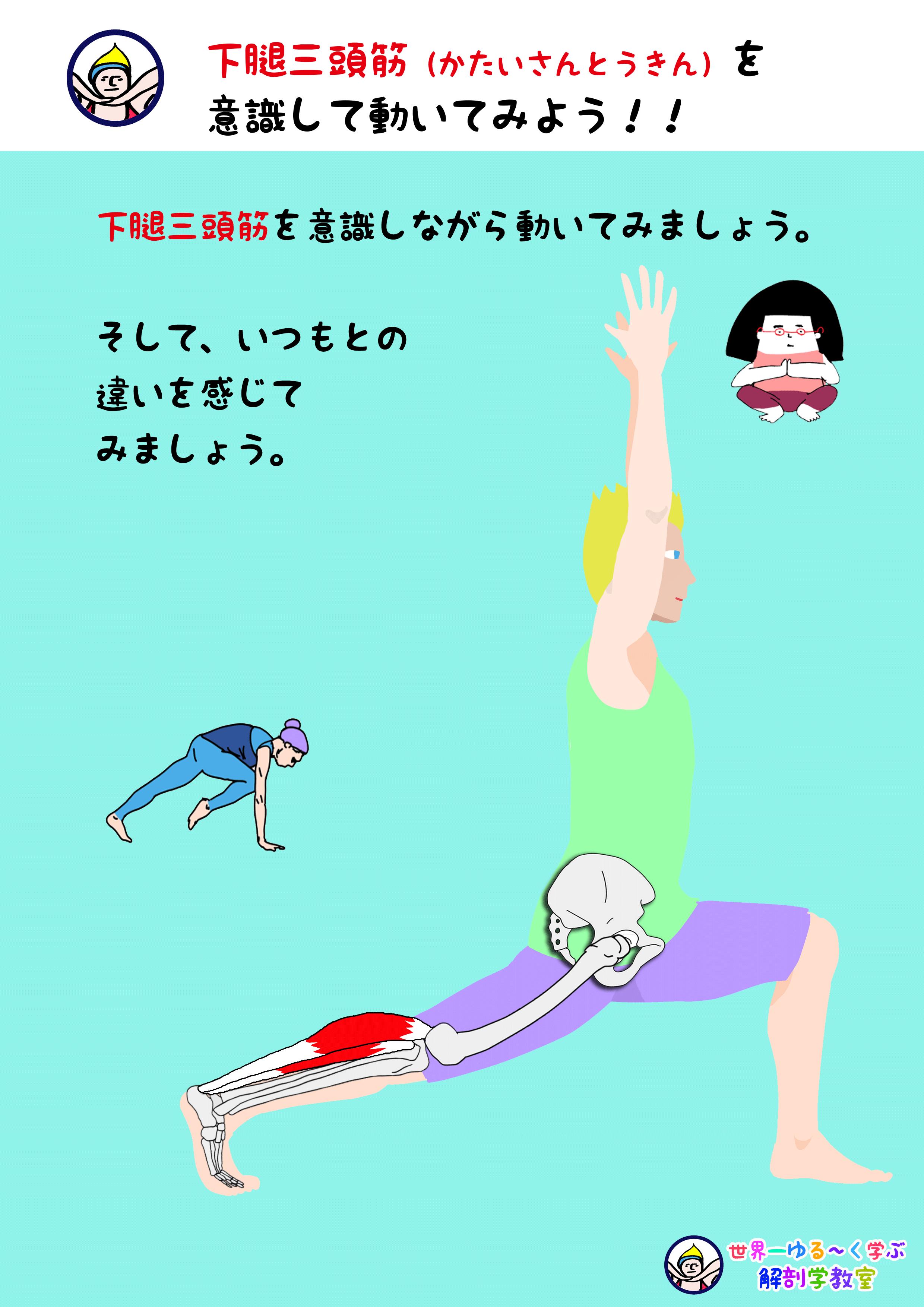 下腿三頭筋を意識する