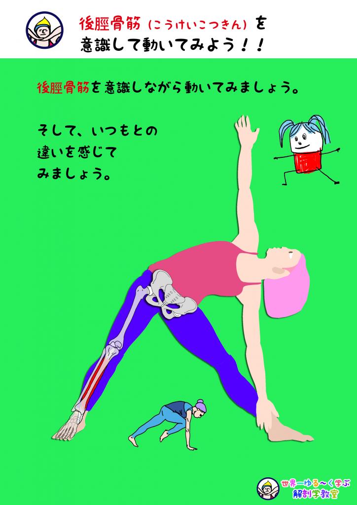 後脛骨筋を意識する