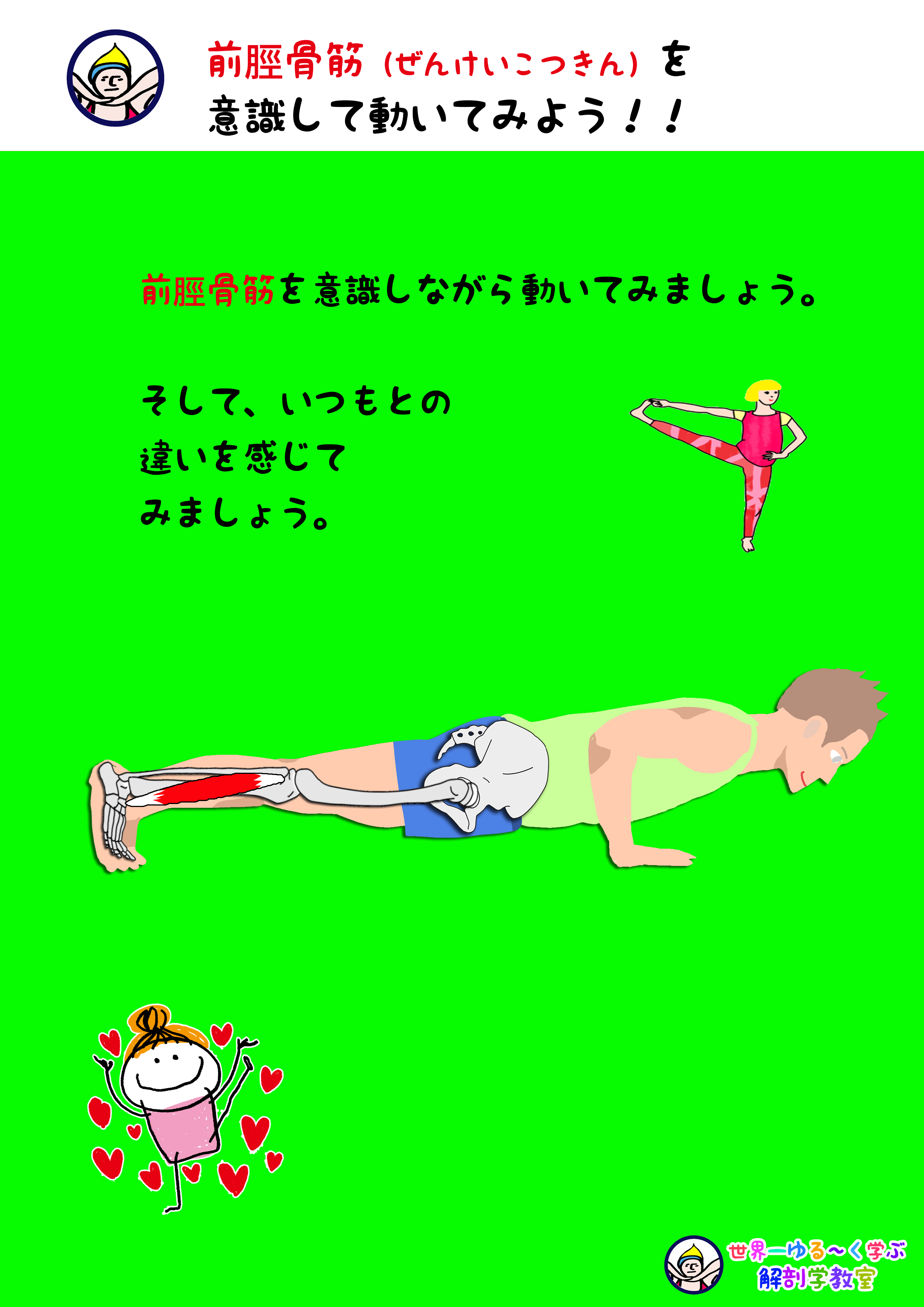 前脛骨筋を意識する