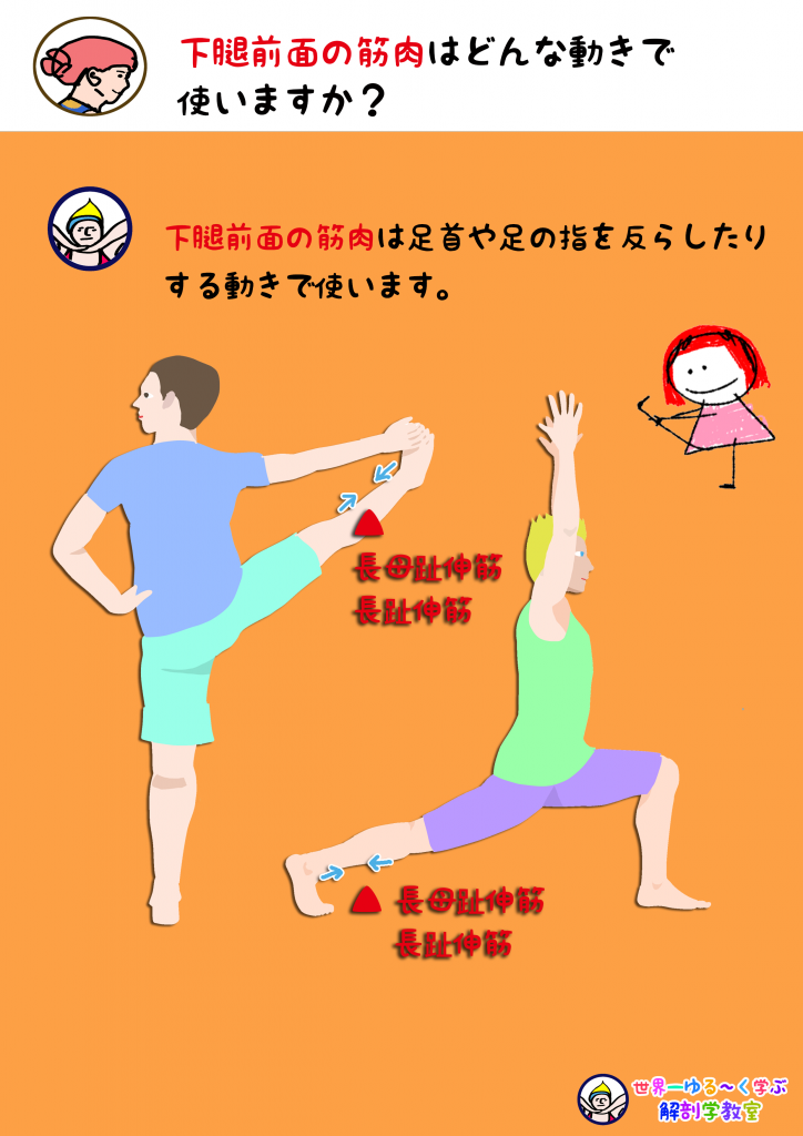 足指背屈を使う動き