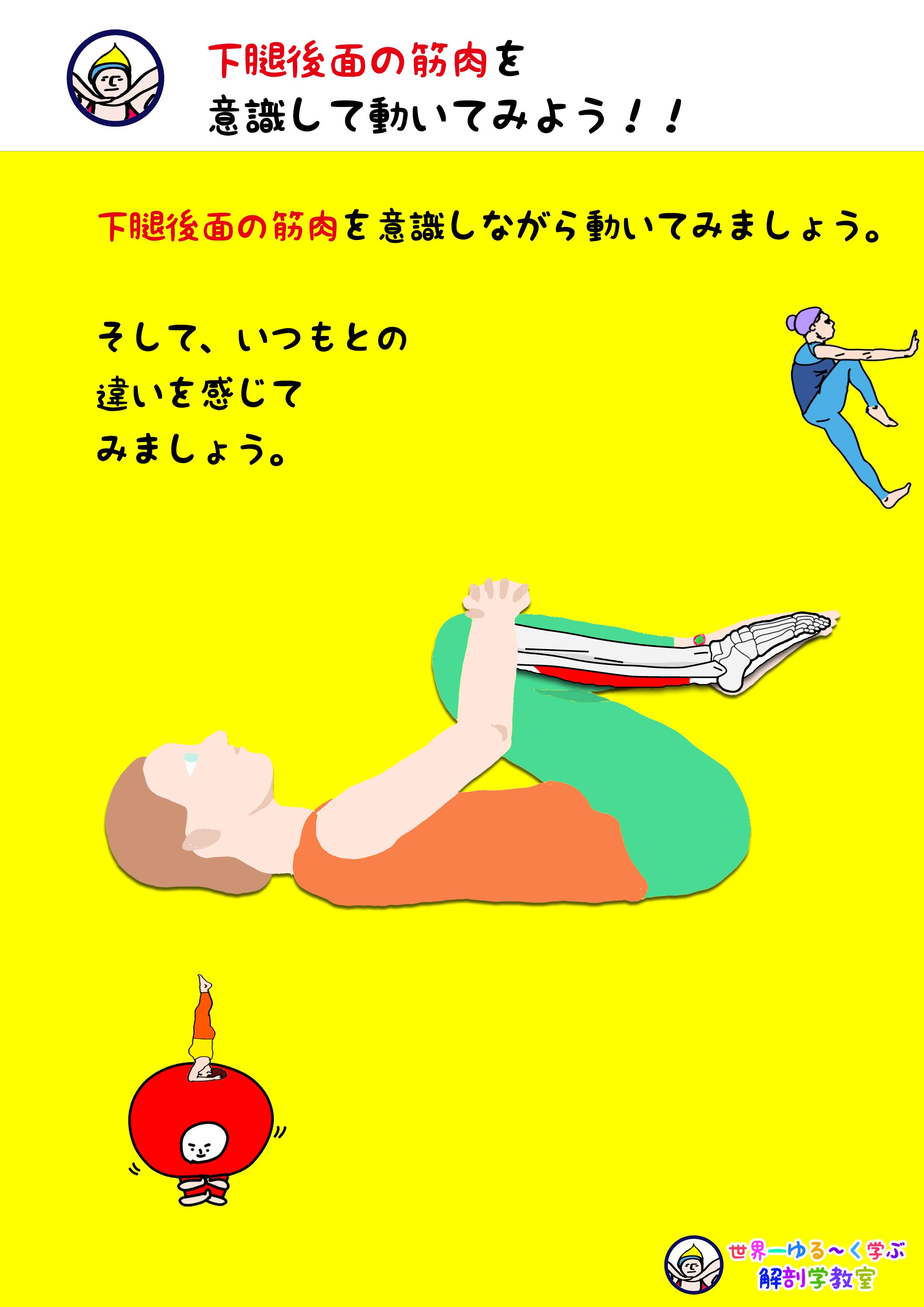 足趾屈筋を意識する