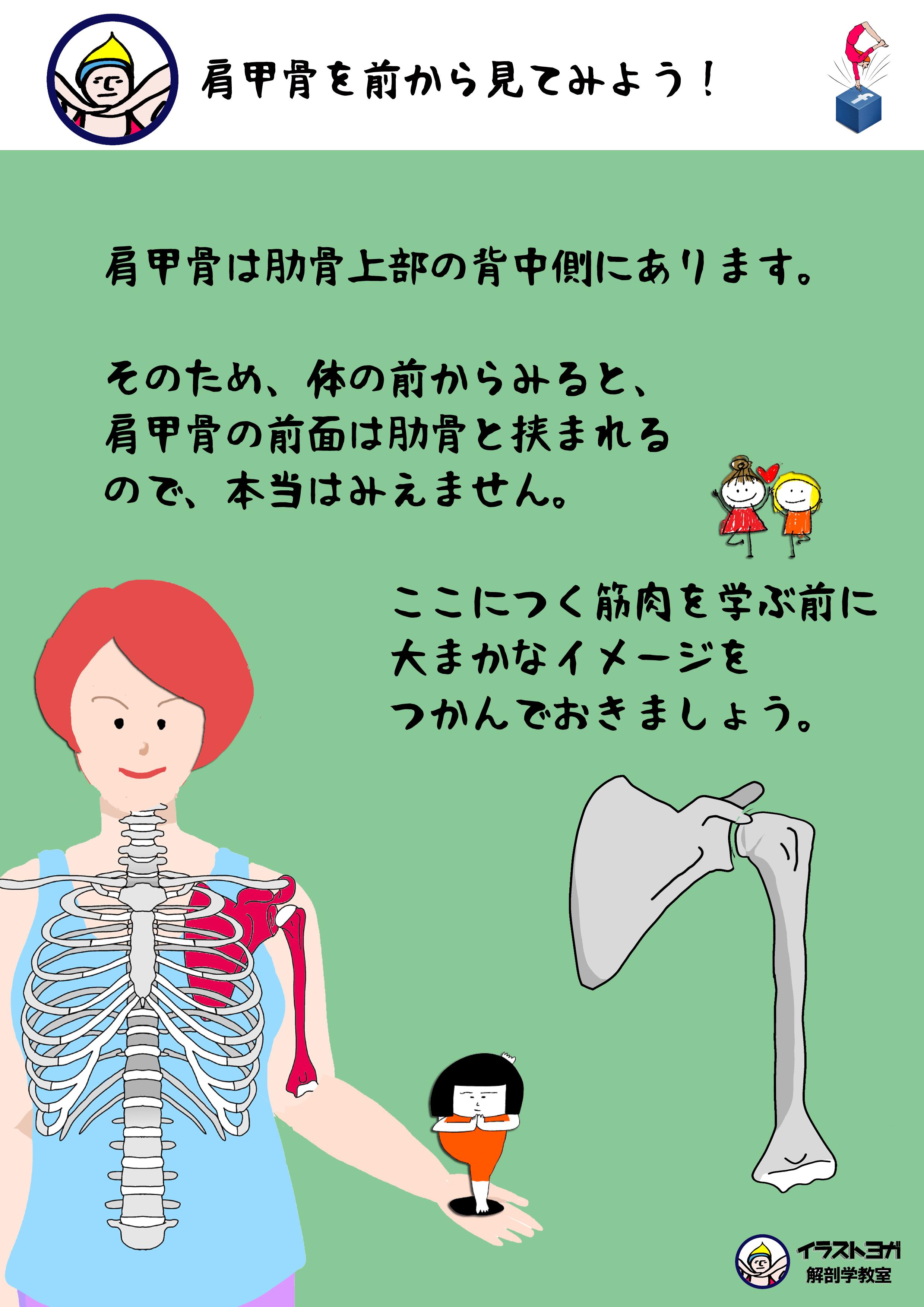 イラスト ヨガ
