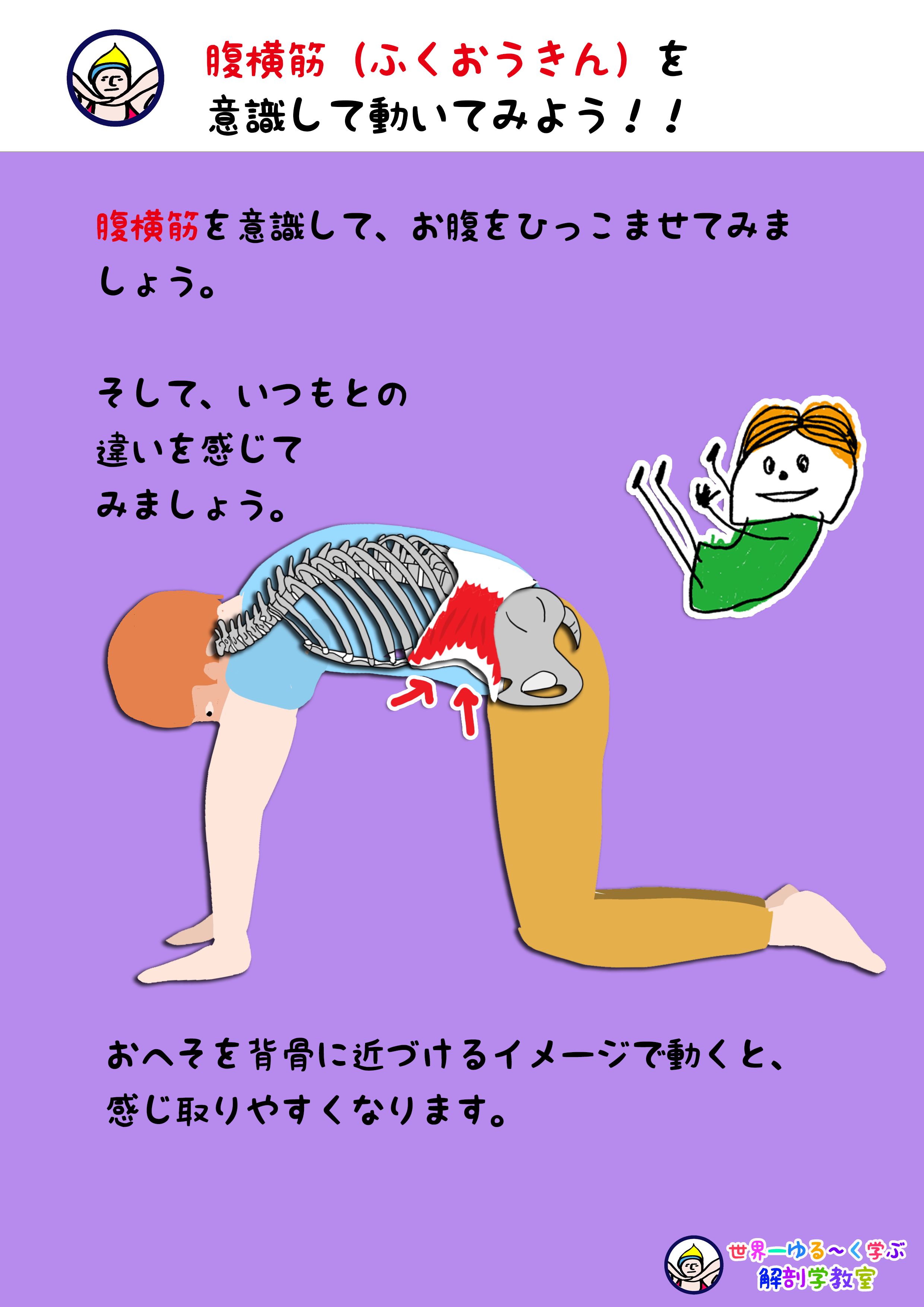 腹横筋を意識する