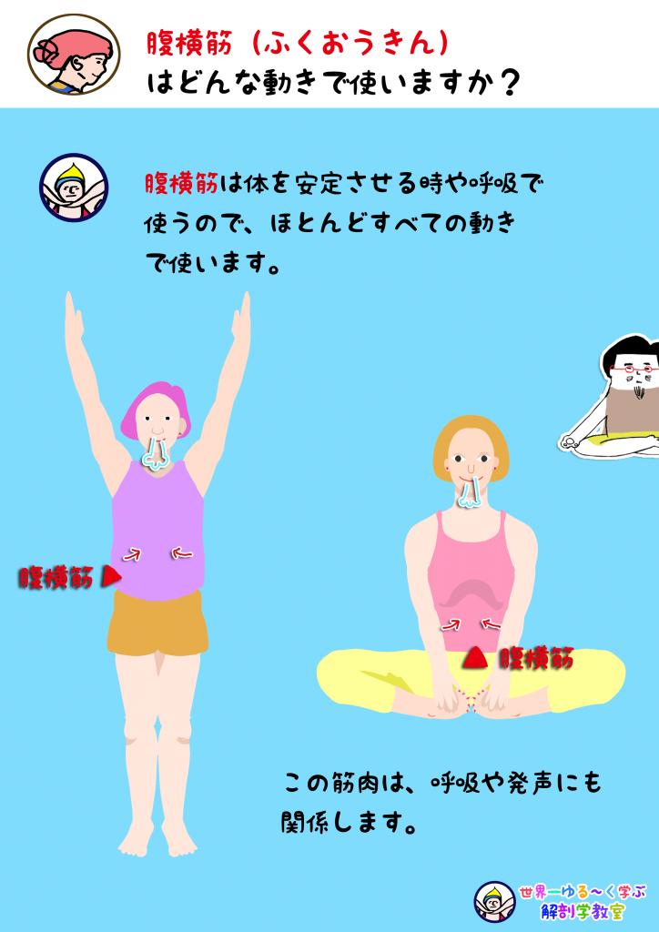 腹横筋を使う動き