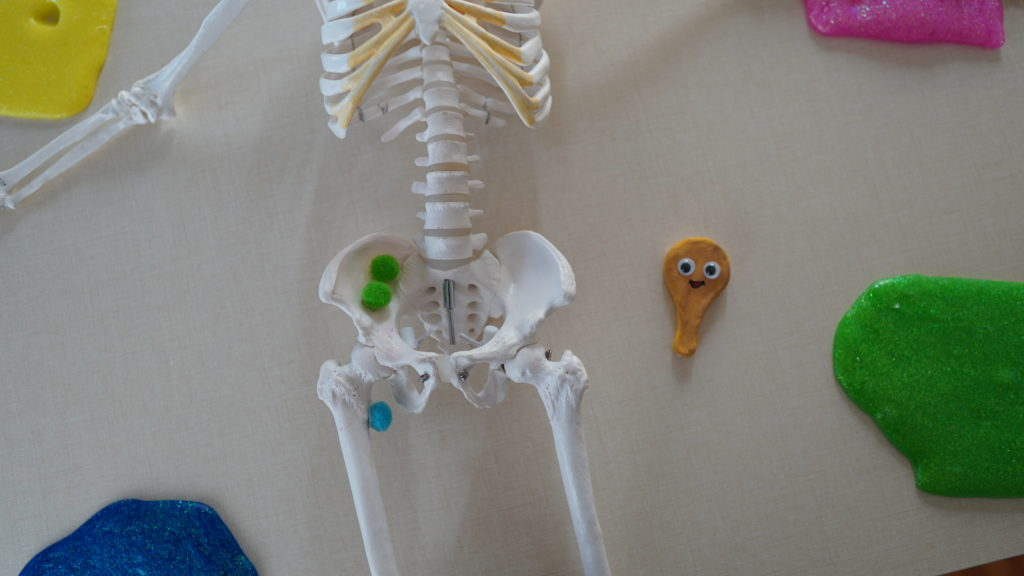 腸骨筋のストレッチ