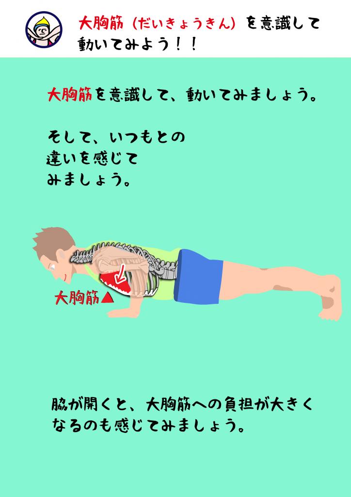 解剖学|アーサナ