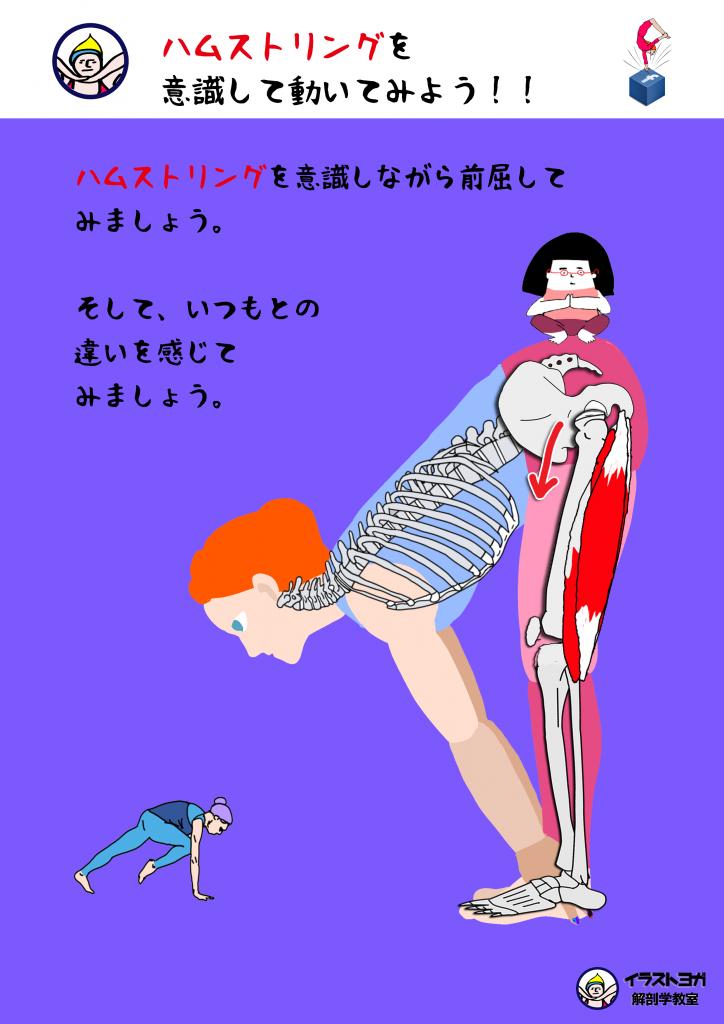 セミナー ヨガ解剖学