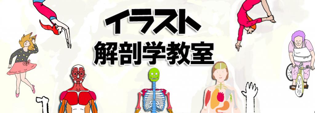 世界一ゆる~く学ぶ イラスト解剖学教室